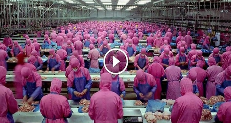 without-saying-a-word-this-short-6-minute-video-will-leave-you-speechless